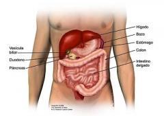 Tratamiento de enfermedades del pancreas