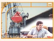 Asesoramiento técnico para la importación o exportación de todo tipo de granos