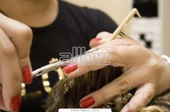 Servicios peluquerias